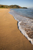 Erken monring Körfezi kıyı üzerinde jog — Stok fotoğraf