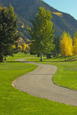 Aspen Golf Course as the Aspen Pines Change Colo — Stock Photo