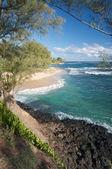 Tropical Shoreline on Kauai, Hawaii — Stock Photo