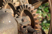 Vintage Rusty Farm Equipment Gears — Stock Photo