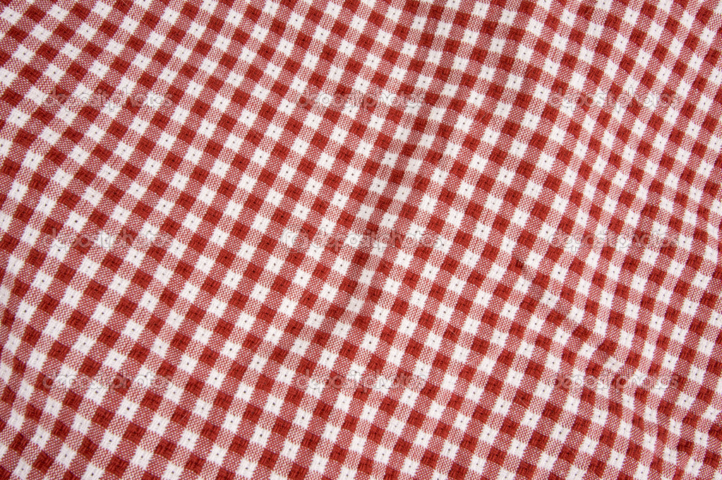 Red and White Checkered Picnic Blanket Detail  Stock Photo #2351931
