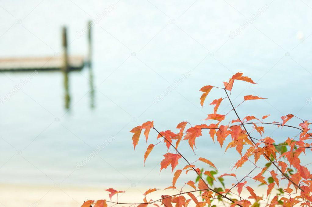 Tranquil Morning Lake and Dock Scene with Beautiful Fall Leaves. — Stock Photo #2356910