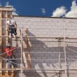 Carpenters Working Diligently on Brick Wall - Foto Stock