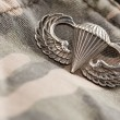 Paratrooper War Medal on Camouflage - ストック写真
