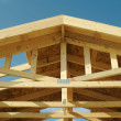 Construction Home Framing Abstract — Stock Photo #2361057
