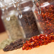 Glass Bottles of Various Cooking Spices — Foto Stock