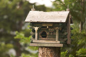 Rustic Birdhouse Amongst Pine Trees — Stock Photo