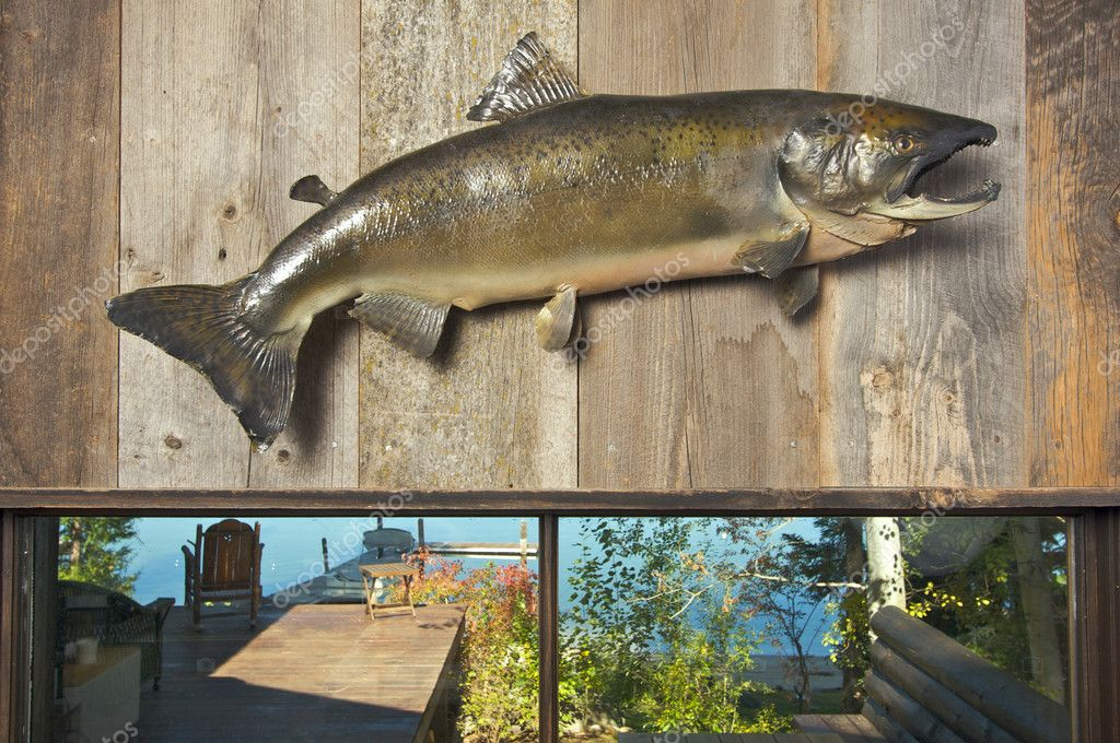 Stuffed Fish Mounted on the Wall with Deck and Lake in the Background — Stock Photo #2361007