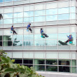 Workers cleaning office building windows — Stock Photo