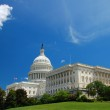 US Capitol in Washington DC — Stock Photo #2331855