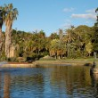 Sydney Royal Botanic Gardens lake — Stock Photo