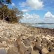 Stock Photo: Beach at Noosa Head, Australia