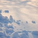 tło biały śnieg świeży — Zdjęcie stockowe