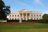White House in Washington, DC — Stock Photo