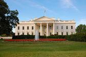 White House in Washington, DC — Stock Photo