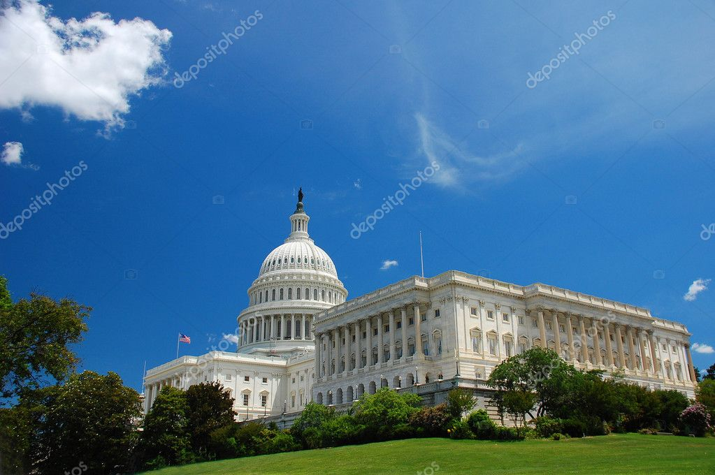 US Capitol in Washington DC with green grass and blue sky — Stock Photo #2331855