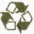 Royalty-Free Stock Photo: Recycling symbol made of flowers