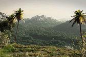 CGI landscape — Stock Photo