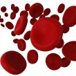 Red blood cells — Stock Photo