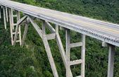 Alto puente que cruza un valle verde — Foto de Stock