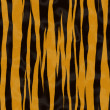 Stock Photo: Tiger fur texture