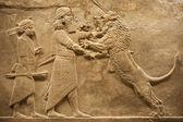 Leões de caça assirian guerreiro — Foto Stock