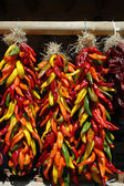 Multi colored chili ristras — Stock Photo