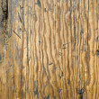 Photo: Distressed Wood