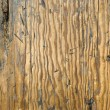 Distressed Wood — 图库照片 #2332412
