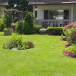 Manicured Yard — Stock Photo