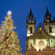 Christmas tree in Prague - Stock Photo