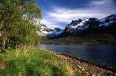 Norway mountain — Stock Photo