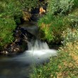 Stock Photo: Wilderness Stream