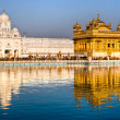 Golden Temple in Amritsar, Punjab, Indi - Stock Photo