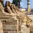 Luxor, Egypt. — Stock Photo