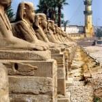 Luxor, Egypt. — Stock Photo