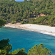 Fetovaia beach, Marina di Campo, Isle of Elba, I — Stock Photo