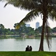Couple under palm tree. - Stock Photo