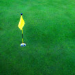 Golf Hole on Green Grass - Stock Photo