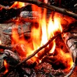 Campfire with Hot Coals — Stock Photo #2507099