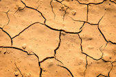Drought Dried Dirt — Stock Photo