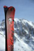 концы лыж — Стоковое фото