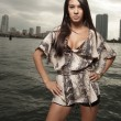 Latina model by the bay - Stock Photo