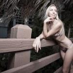 Woman in a bikini — Stock Photo #2595485