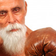 Royalty-Free Stock Photo: Old Boxer 1