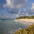 Barbados Shoreline — Stock Photo