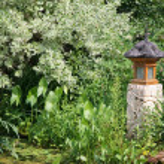Garden Lantern — Stock Photo #2339426