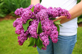 Lilac Bouquet — Stock Photo