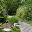 Garden Walkway — Stock Photo