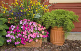 Fioriere giardino — Foto Stock
